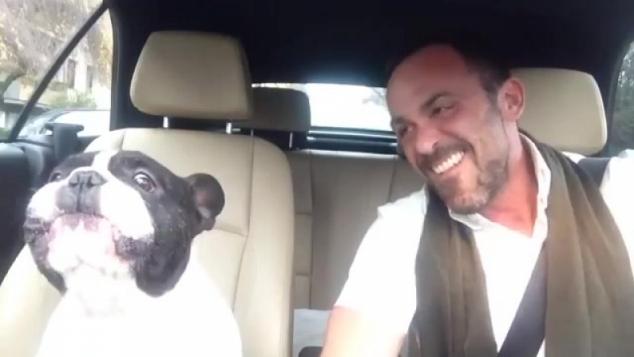 Водитель и ему подпевает пёс