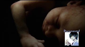 Как проходит беременность (Зачатие, Развитие плода(до 28-й недели)) (Часть 1) (720p)